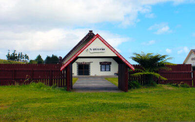 Traditional Systems Heal (Pukepoto : Northland)